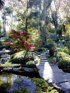 Jardín Botánico, Botanical Garden, Montevideo - Uruguay