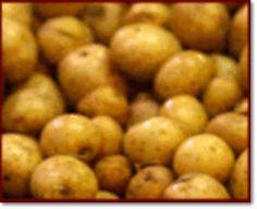 Ricette > Friuli Venezia Giulia > Dolci: Chifeleti