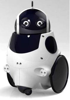 Thecorpora begins pre-orders for its Q.bo Robots