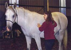 Equine Facilitated Learning - article about bringing horses together with children with mental or emotional disorders.
