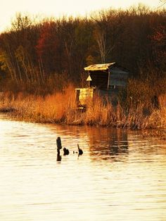 Abandoned duck blind- photo by CamilleTyler