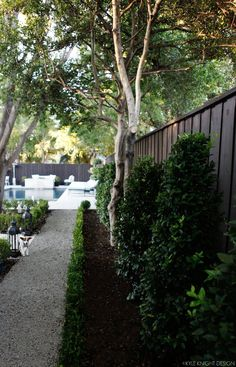 lovely landscaping around the pool via Knight Moves: Pool and Patio Update
