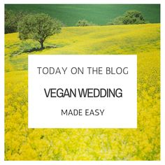 How to plan a Vegan Wedding http://www.annaborgia.com/sustainable-weddings/vegan-wedding-made-easy/