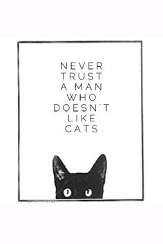 Never trust a man who doesn't like cats.