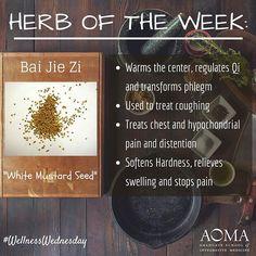 #WellnessWednesday:  Chinese #Herb of the Week, Bai Jie Zi! ☺️ #integrativelife