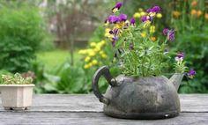 5 ideas para decorar el jardín con teteras viejas - IMujer