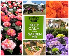 Providence Hospital Festival of Flowers in Mobile, Alabama. story at: Fairhope Supply Co. Providence Hospital, Southern Names, Tea And Crumpets, Mobile Alabama, British Garden, Opening Day, Patterned Carpet, Through The Looking Glass, Beautiful Images