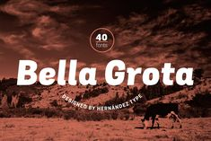 Grota is back in its new Sans version, with a complete family of 40 fonts, 10 different weights and their respective cursives, and an alt version.