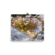 Photo paper poster with autumn leaf heart in water.