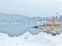 Winter am Titisee