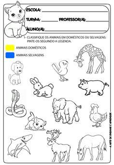 resultado de imagem para atividade os animais caligrafia