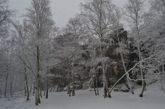 1 Day trips from Prague. Hiking in Bohemian Paradise UNESCO Geopark in Czech Republic. Bohemian Switzerland National Park and more Czech nature. Day Trips From Prague, Hiking Tours, One Day Trip, Winter Hiking, Tour Operator, Walking Tour, Narnia, Czech Republic, Switzerland