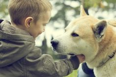 How Dogs Help Children With Autism | WOOFipedia by The American Kennel Club