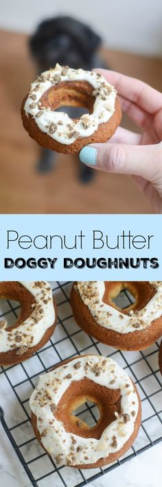 Peanut Butter Dog Doughnuts - treat your pup to a homemade doughnut!: