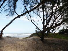 Praia Morro dos Conventos SC,bRASIL