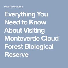 Everything You Need to Know About Visiting Monteverde Cloud Forest Biological Reserve