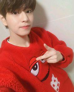 Lee Min Ho, Day6, V Bts Cute, Stray Kids Seungmin, Wattpad, Kids Icon, My Little Baby, Minnie, Lee Know