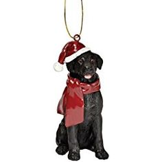 Hand-painted holiday ornament with a black Labrador retriever in a hat and scarf. Product: OrnamentConstruction Material: ResinColor: Black, white and redFeatures: Labrador motifHand-painted Dimensions: H x W x D Schwarzer Labrador Retriever, Black Labrador Retriever, Labrador Retrievers, Dog Ornaments, Christmas Tree Ornaments, Ornament Tree, Black German Shepherd Dog, German Shepherds, Black Labs Dogs