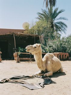 A Mini-Guide to Morocco
