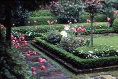 Insp. for small formal garden in front of Main Bedroom Window