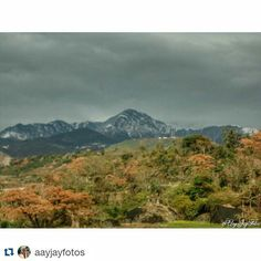 "#Repost @aayjayfotos with @repostapp To get featured  tag your post with #talestreet Colors of the Fall..... Foothills Of Dharamshala . . . Nothing Stay Forever"" ""Natures first green is gold ""Her hardest hue to hold. ""Her early leafs a flower; ""But only so an hour. ""Then leaf subsides to leaf. ""So Eden sank to grief ""So dawn goes down today. ""Nothing gold can stay. -- Robert Frost.  #dharamshala #nature #mountains #mypixeldiary #colorful #colors #fall #winter #hills #photooftheday…"