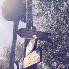 Discover the beautiful sunny Tuscany! #labellavita #lasaracina