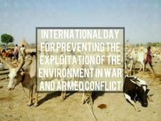 Armed Conflict, International Day, Environment, Peace, Holidays, Vacations, Holidays Events, Environmental Psychology, Holiday