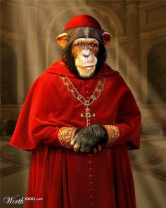 Animal Dress Up 8: Cardinal Chimp - Worth1000 Contests