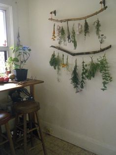 """tulullabelle: """" my new drying set up! slowly harvesting the herb garden """" Herb Drying Racks, Drying Herbs, Herb Rack, Design Jardin, Kitchen Witch, Dried Flowers, Decoration, Home Projects, Herbalism"""