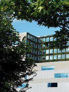 When #green meet #building #city of #Amsterdam — 07-16