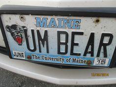 UNIVERSITY OF MAINE [BLACK] BEAR