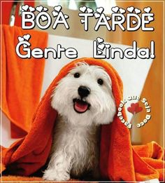 Portuguese Quotes, Happy Wishes, Good Afternoon, Animals And Pets, Facebook, Download, Meme, Crochet, Disney