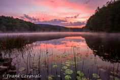 Plum Orchard Lake In West Virginia by Frank Ceravalo