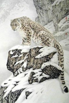 Snow leopard - king of the mountain (big cats). beautiful leopard in the snow animals birds nature wildlife photography Nature Animals, Animals And Pets, Cute Animals, Wild Animals, Animals In Snow, Fierce Animals, Draw Animals, Baby Animals, Beautiful Cats