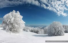 sila, montescuro, neve, fotografie turismo italia,