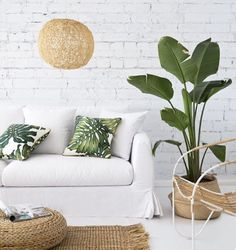 Palm print pillows, white couch cover, and palm plant.