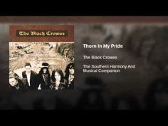 "YouTube- the black crowes ""thorn in my pride"" audio"
