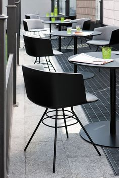 Dining Office Chairs Nz 35 best Dining Chairs images on Pinterest