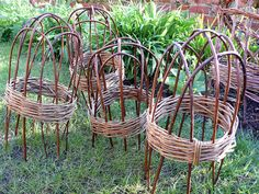 eschew bamboo with a simple willow cloche for protecting shoots in spring and winter