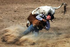 Action-Photography06.jpg (550×377)