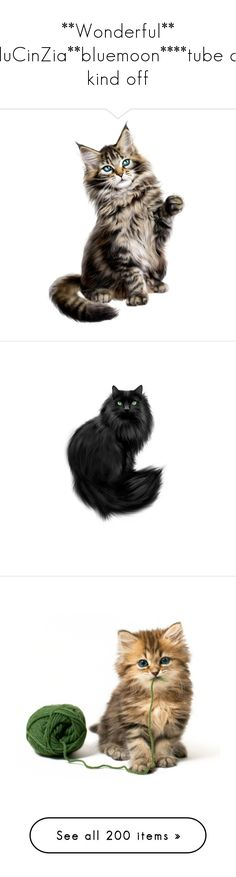 """**Wonderful** BluCinZia**bluemoon****tube all kind off"" by bluemoon ❤ liked on Polyvore featuring animals, cats, halloween, fillers, pets, filler, rabbits, bunnies, easter and backgrounds"