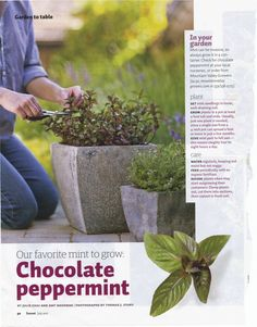 Scanned from the July 2011 Sunset Magazine.  Unable to find online.  It's a must in my garden this year.