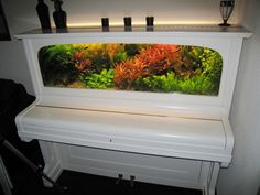 Recycled Piano Aquarium Aquarium Original, Fish Tanks, Aquarium Fish Tank, Aquarium Ideas, Upcycled Furniture, Recycling Furniture, Diy Furniture, Refurbishing Furniture, Furniture Plans