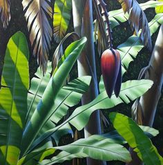 Want to paint a tropical landscape like this one?  Mark's new tutorial page gives you some tips and tricks to bring awesome colour and nuance to your acrylic paintings.  I know you wanna!!!