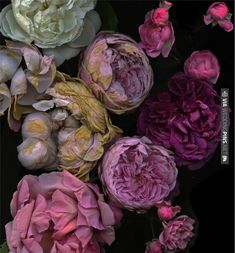 absolutely gorgeous flowers   CHECK OUT MORE IDEAS AT WEDDINGPINS.NET   #weddings #weddingflowers #weddingbouquets #bouquets