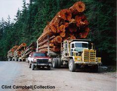 http://www.hankstruckpictures.com/pix/trucks/clintcampbell/kw850_logger2.jpg