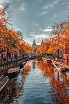 Amsterdam's pretty tree-lined canals get an autumnal makeover in the Netherlands. For more beautiful autumn photos from around the world visit: cntraveller.com/gallery/photos-of-autumn