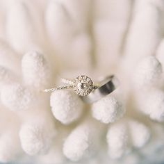 Up close and personal with this lovely set for Amanda and Jonathans Wedding with @arielleeazoff with @lvlweddings #engaged #engagementring #weddingbands #weddingring #film #filmphotography #ishootfujifilm