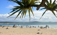 Learn to surf at Noosa Main Beach while studying abroad at the University of the Sunshine Coast!