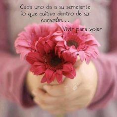 Cada uno da a su semejante, lo que cultiva dentro de su corazón...❤️#inspiración #inspiration #amor #love #felicidad #happiness #paz #peace #amistad #friendship #afecto #affection #namaste #yoga #esperanza #sabiduría #conciencia #conscience #wisdom #hope #fe #faith #strenght